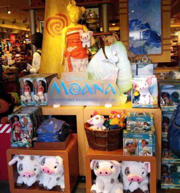 moana-display