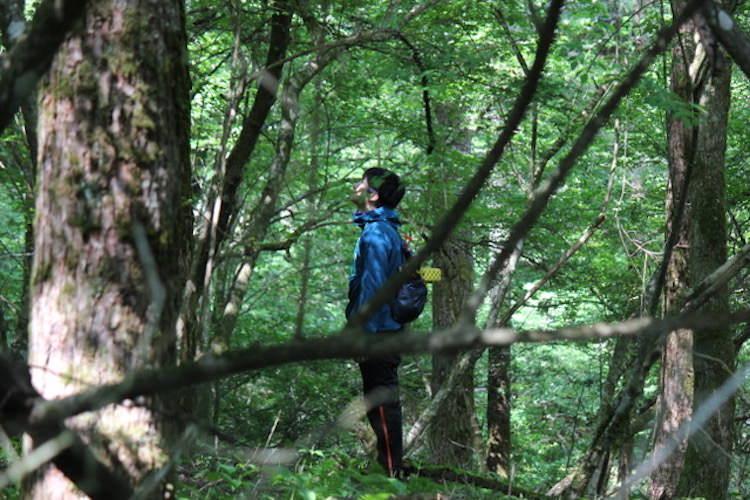 現代人がかかえる「そこはかとない不安」を癒す「森の力」に惹かれて事業を起こす(山田博さん/ライフシフト年齢46歳)