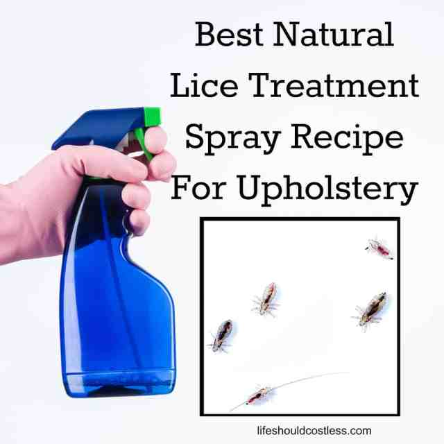 Lice Spray Recipe For Soft Surfaces