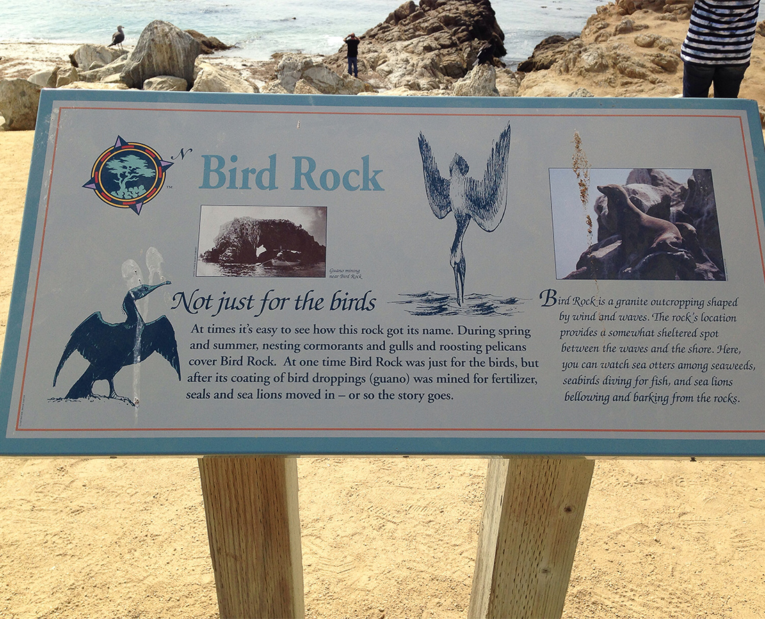 Bird Rock stop on 17-Mile Drive on the scenic California coast. Photo Credit: Wendy Nordvik-Carr©