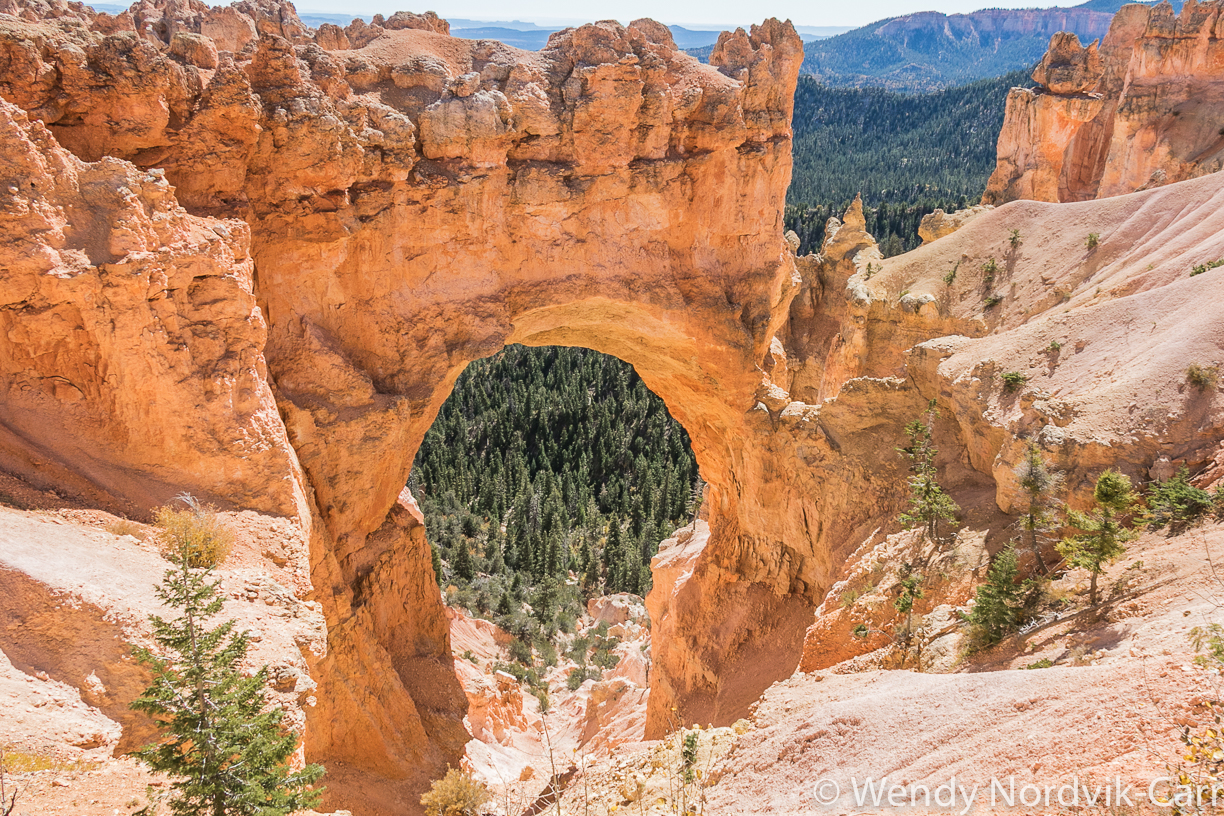 Natural Bridge is an arch - Travel to Bryce Canyon to discover the largest hoodoo collection in the world. Photo Credit: Wendy Nordvik-Carr