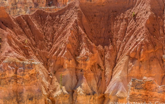 Travel to Bryce Canyon to discover The largest hoodoo collection in the world.