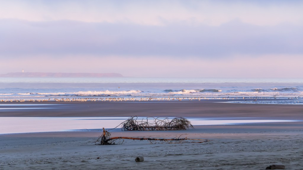 Top things to do at Kalaloch and Ruby Beach, Olympic National Park. Listen to the sound of the ocean waves.