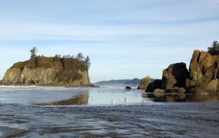 Explore stunning Ruby Beach and its rugged coastline. Tides come in quickly. Don't get stranded. Useful trip planning tools for Olympic National Park. Always check road, trail, tides and weather conditions. It is a wild, vast wilderness of nature at its best.Photo Credit: Wendy Nordvik-Carr © View more photos wendynordvikcarr.com