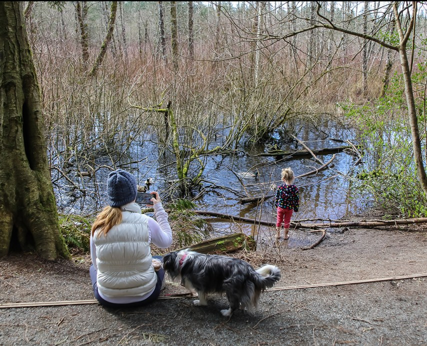 A little girl explores on a walk in the marshy woodlands of Campbell Valley Regional Park in Metro Vancouver.