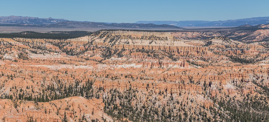 Travel to Bryce Canyon to discover The largest hoodoo collection in the world. Photo Credit: Wendy Nordvik-Carr