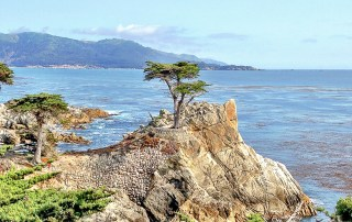 The scenery is spectacular along scenic route 17-Mile Drive. The road hugs the rugged California coast offering fantastic views. Photo Credit: Wendy Nordvik-Carr©