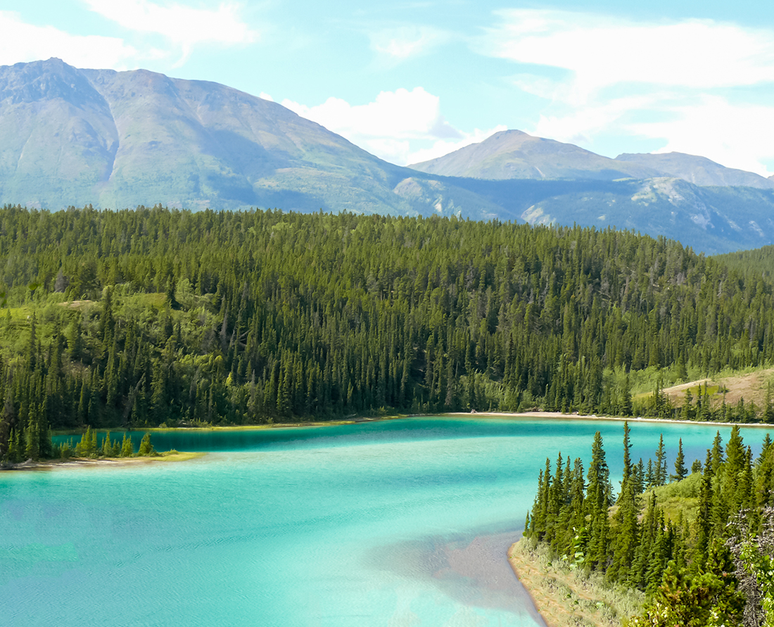 A photo stop at Emerald Lake to view its stunning turquoise coloured waters. Discover the breathtaking scenery of the Yukon wilderness. Explore top things to do while in Skagway Alaska port of call. Photo Credit: Wendy Nordvik-Carr