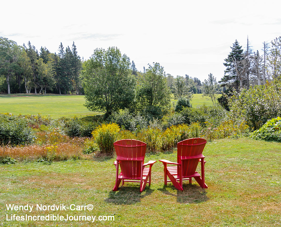 "A relaxing place to view of the meadows PEI Green Gables. The stunning countryside setting is located in Prince Edward Island National Park in Cavendish. Cavendish and the 19th century farm, Haunted Woods and Lover's Lane were made famous by author Lucy Maud Montgomery with her stories about ""Anne of Green Gables"". Don't miss this popular tourist destination on the scenic drive known as Green Gable Shore. Photo Credit: Wendy Nordvik-Carr©"
