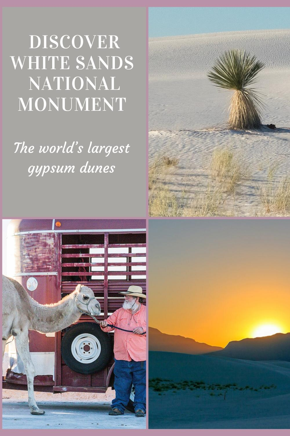 Interesting facts about White Sands National Monument, the world's largest gypsum dunes