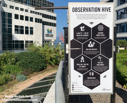 The Observation Hive on the roodtop of Fairmont Waterfront Hotel. Photo Credit: Wendy Nordvik-Carr©