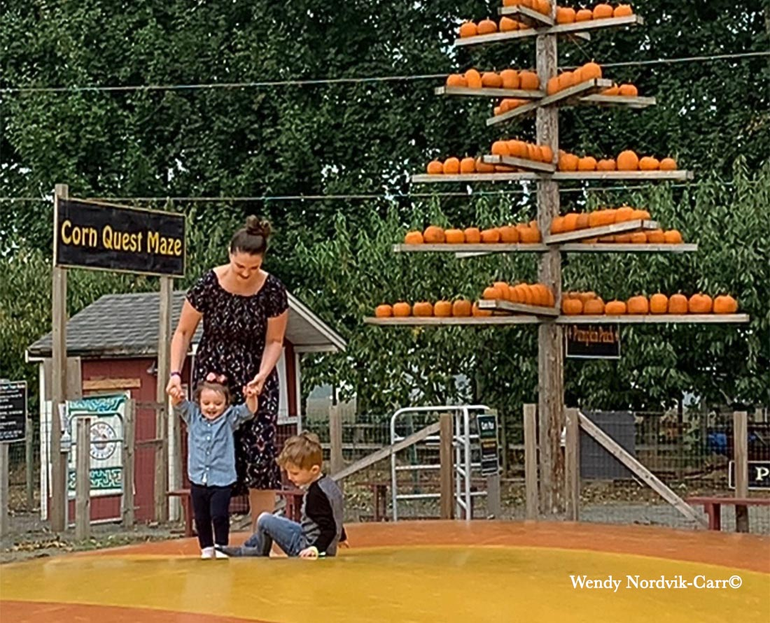 Best fall activities for kids Metro Vancouver Pumpkin Patch Corn Maze Taves Abbotsford
