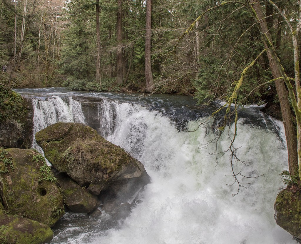 Waterfalls at the Stone Bridge in Whatcom Falls Park: Photo Credit: Wendy Nordvik-Carr©