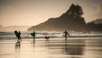 Epic BC road trip - Top things to do Tofino Long Beach - Surfing at Cox Bay Destination Canada, Brian Caissie