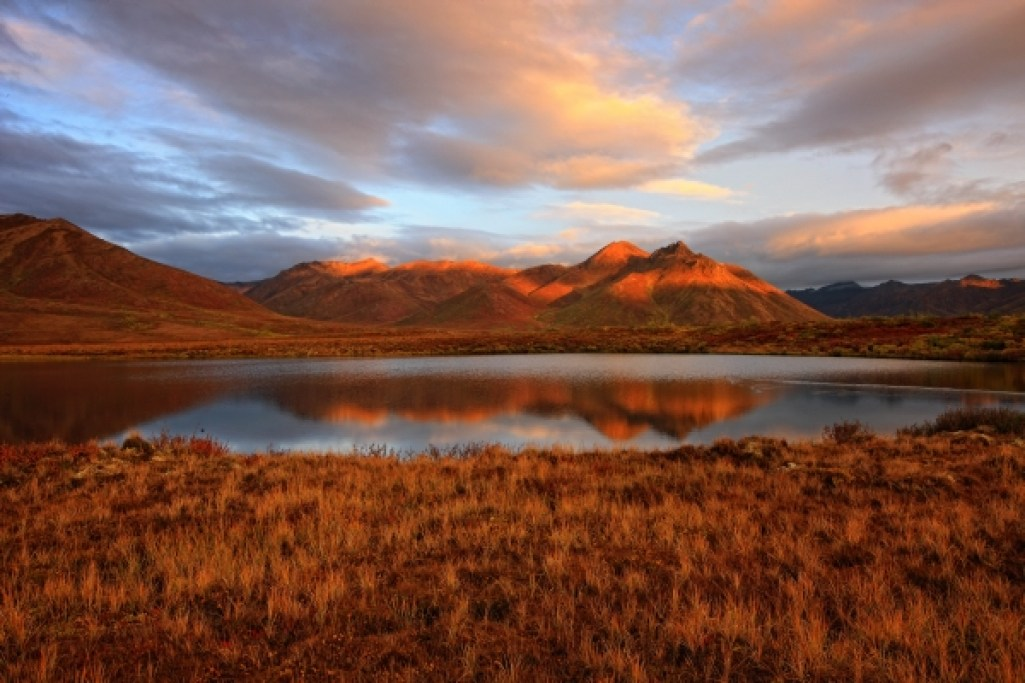 Mount Adney, located approximately 80 km up the Dempster Highway - just as you cross the Blackstone river on the bridge; morning light, sunrise, wetland. Photo Credit: Yukon Government/Robert Potsma