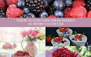 It's berry season. This guide will help you find the best summer berries in Metro Vancouver.