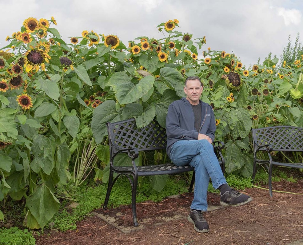 Farmer Loren Taves relaxes in the sunflower field near the end of the season last fall.