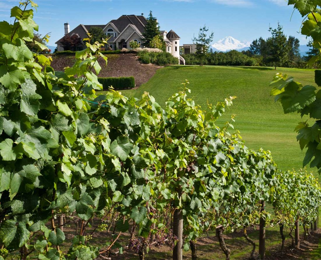 Mt Lehman Estate Winery in Abbotsford is open for wine tasting.