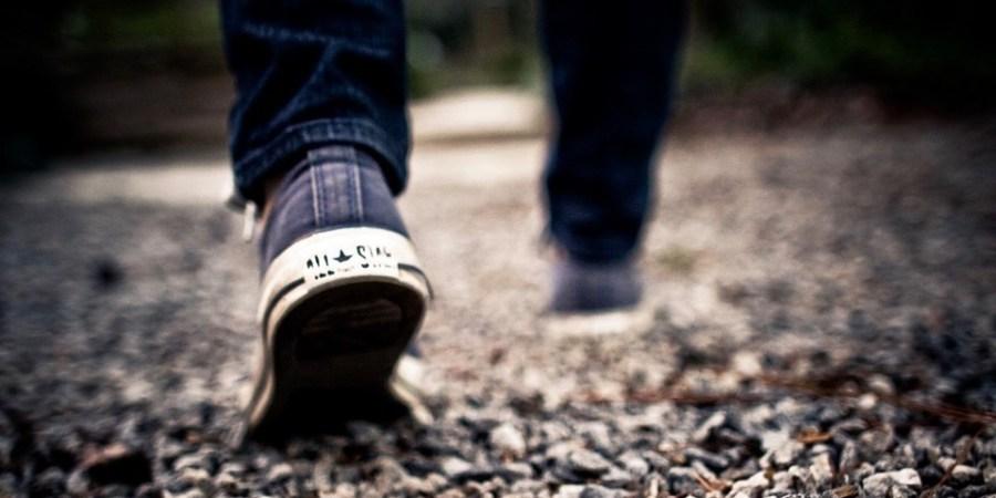 Road to Understanding Mental Illness