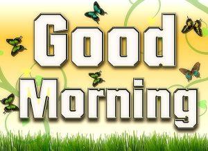 body_good morning