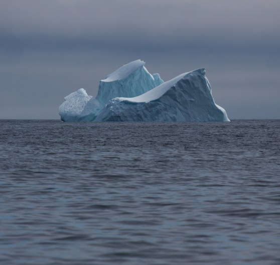 Gaspé Terre Neuve croisière LifeSong Sailing-58