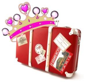 princess luggage