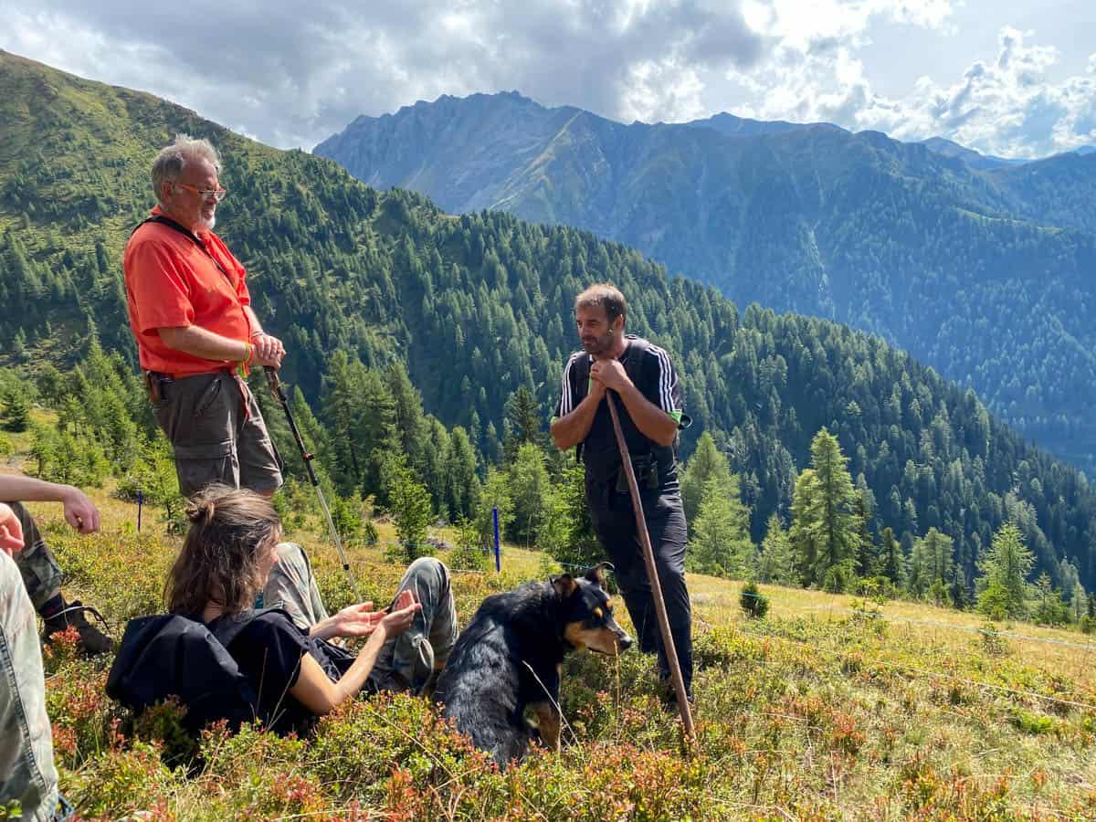 ZDF in Tirol