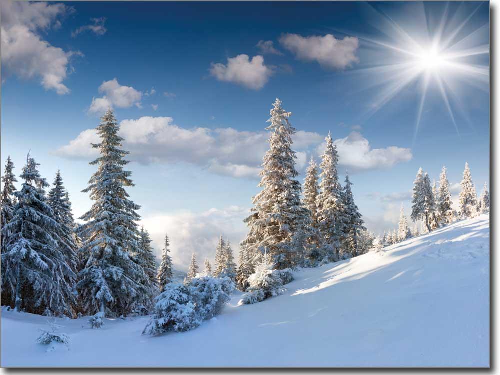 Landschaft im Winter  hochwertiger Druck auf Glas