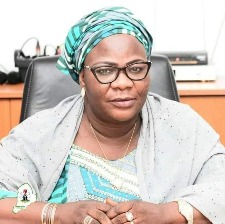 Borno Commissioner for Health queries college provost for suspending students over Buhari?s welcome