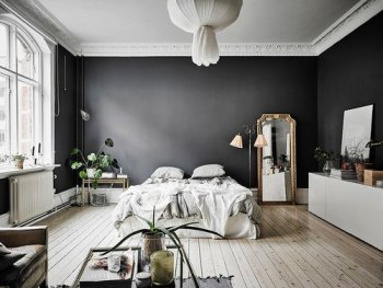 color trends in 2019