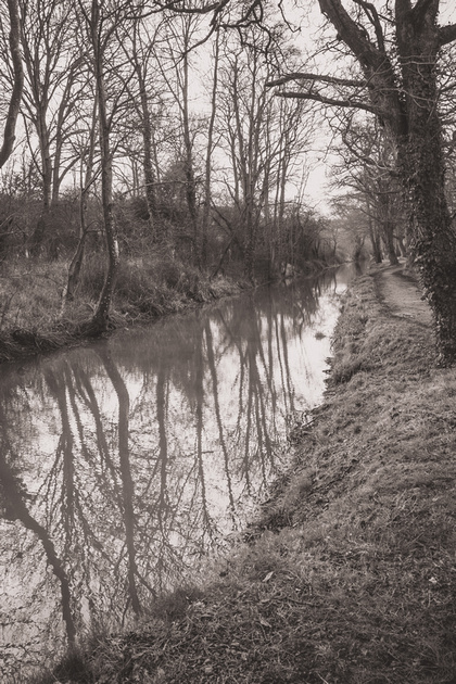 Lifestyle District | Bristol culture & photography blog: Lacock &emdash; DSC_4586