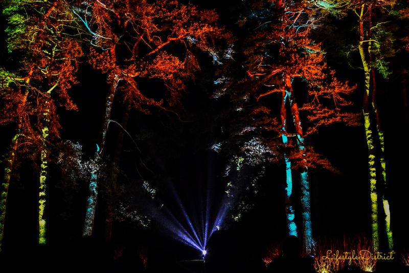 Lifestyle District | Bristol culture & photography blog: Enchanted Xmas CoWheels &emdash; DSC_5174