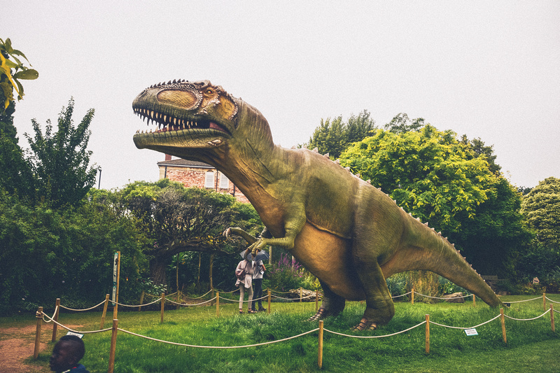 Dinomania at Bristol Zoo Gardens