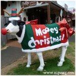 And so this is Christmas in Australia