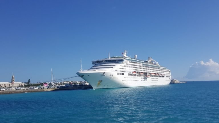 Cruising like a Boss. Save Money on your Next Cruise