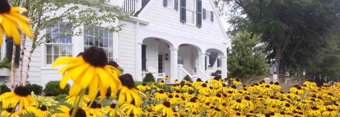 Lovely field of blackened susans complete a rustic Cleveland home's classic beauty.