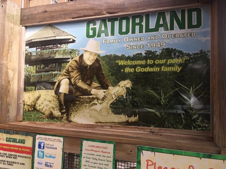 Gatorland and the Mall's
