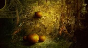 Eventi Halloween: Marche