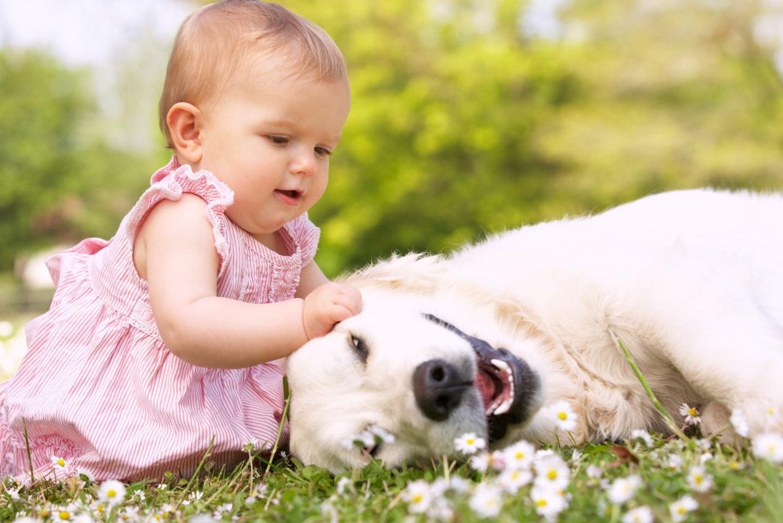 Pet therapy benefici interazione uomo animale domestico for Piani domestici accessibili ai disabili