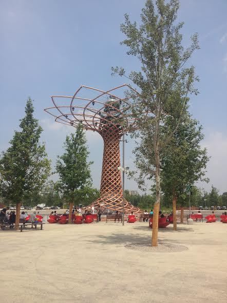 expomilano-alberodellavita