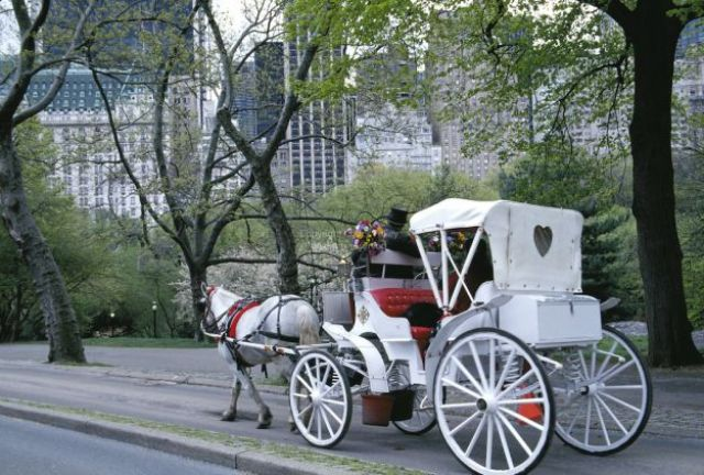Passeggiata in carrozza a Central Park (New York)