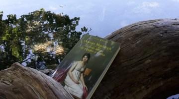 Il mio anno di riposo e oblio di Ottessa Moshfegh (recensione)