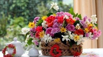 Fiori: il regalo perfetto per tutte le stagioni dell'anno