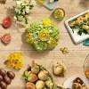 Menù di Pasqua vegetariano: dall'antipasto alla colomba fatta in casa