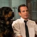 Show Dogs – Entriamo in scena: trama, trailer e recensione in anteprima