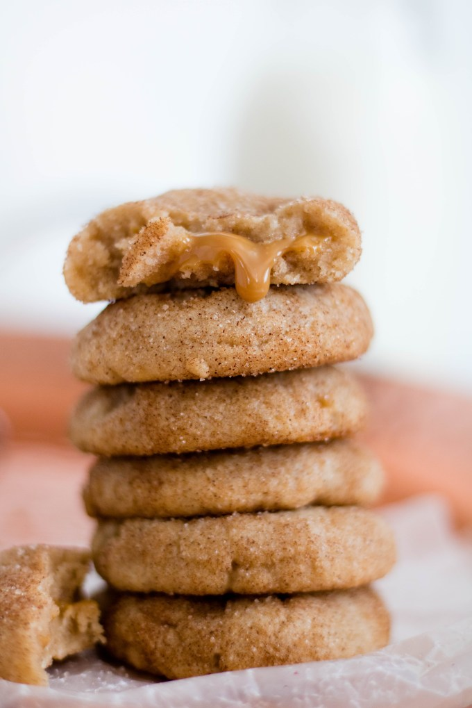 Snicker doodle cookie (16 of 34)