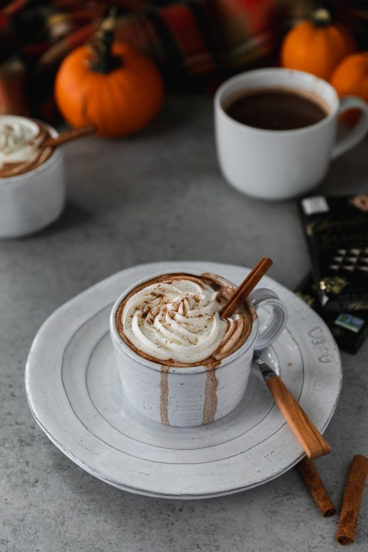 Spices in my DNA boozed pumpkin hot chocolate for the 24 days of pumpkin recipes collection