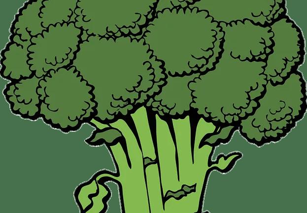 Benefits of eating broccoli