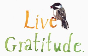 gratitude-1024x662