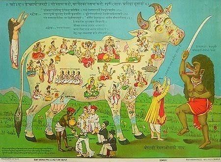 cow worship